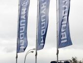 Флаги вертикальные фирменные перед автосалоном