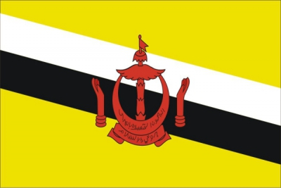 Флаг страны Бруней