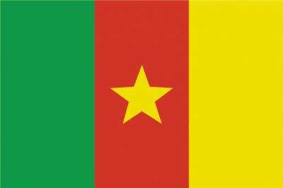 Флаг страны Камерун