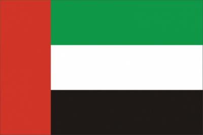 Флаг страны ОАЭ