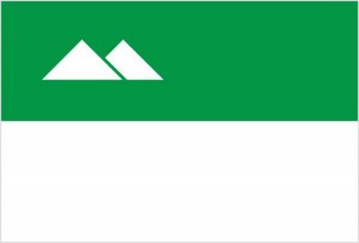 Флаг города Курган