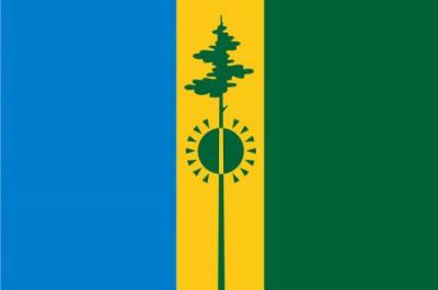 Флаг города Нижнекамск