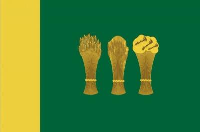 Флаг города Пенза