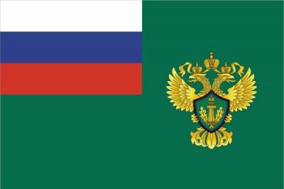 Флаг Федеральной службы РФ по надзору в сфере природопользования (Росприроднадзор)