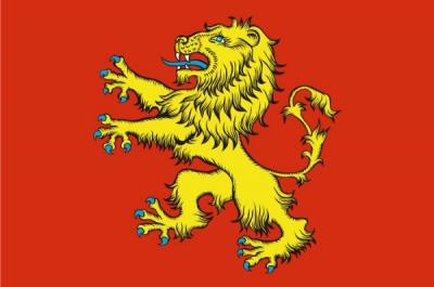 Флаг города Ржев
