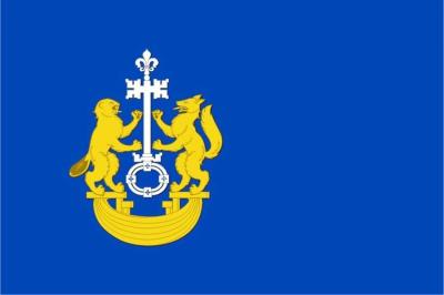 Флаг района Тюменский Тюменской области