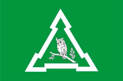 Флаг района Восточное Измаилово города Москва