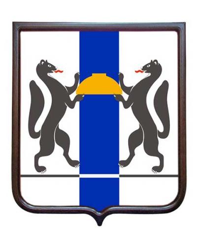 Герб субъекта РФ Новосибирской области (гербовое панно)