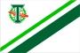Флаг ФК Торпедо