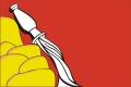 Флаг субъекта РФ Воронежская область