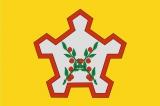 Флаг района Чаплыгинский Липецкая область