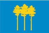 Флаг города Димитровград Ульяновской области