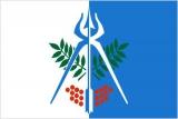 Флаг города Ижевск