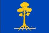 Флаг город Сертолово Ленинградской области