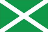 Флаг Федеральной таможенной службы РФ