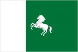Флаг города Томск