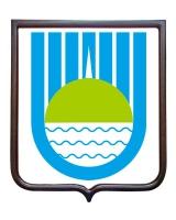 Герб города Биробиджана (гербовое панно)